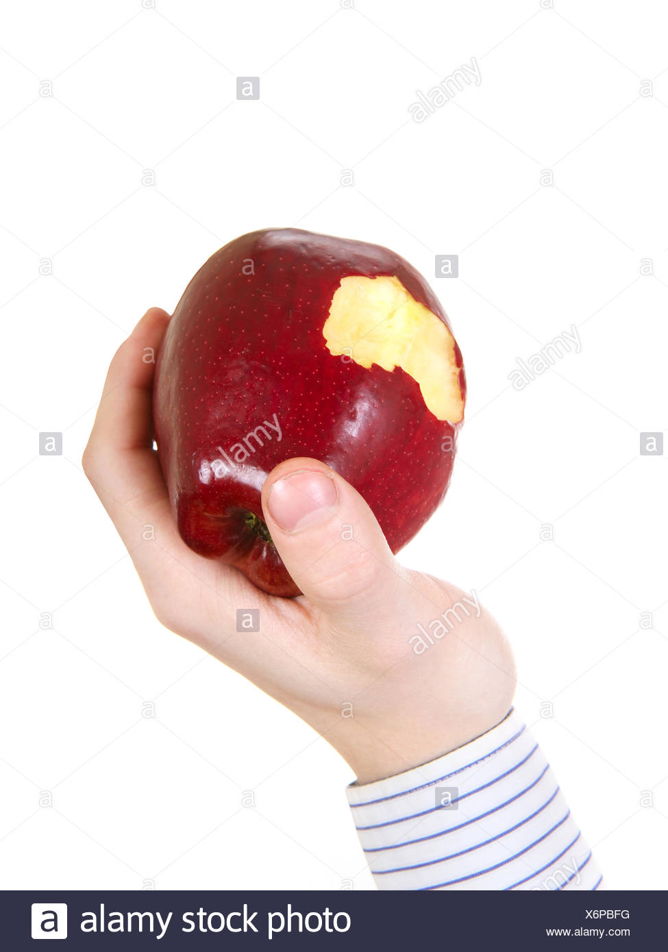 Core of an Apple - Stock Image