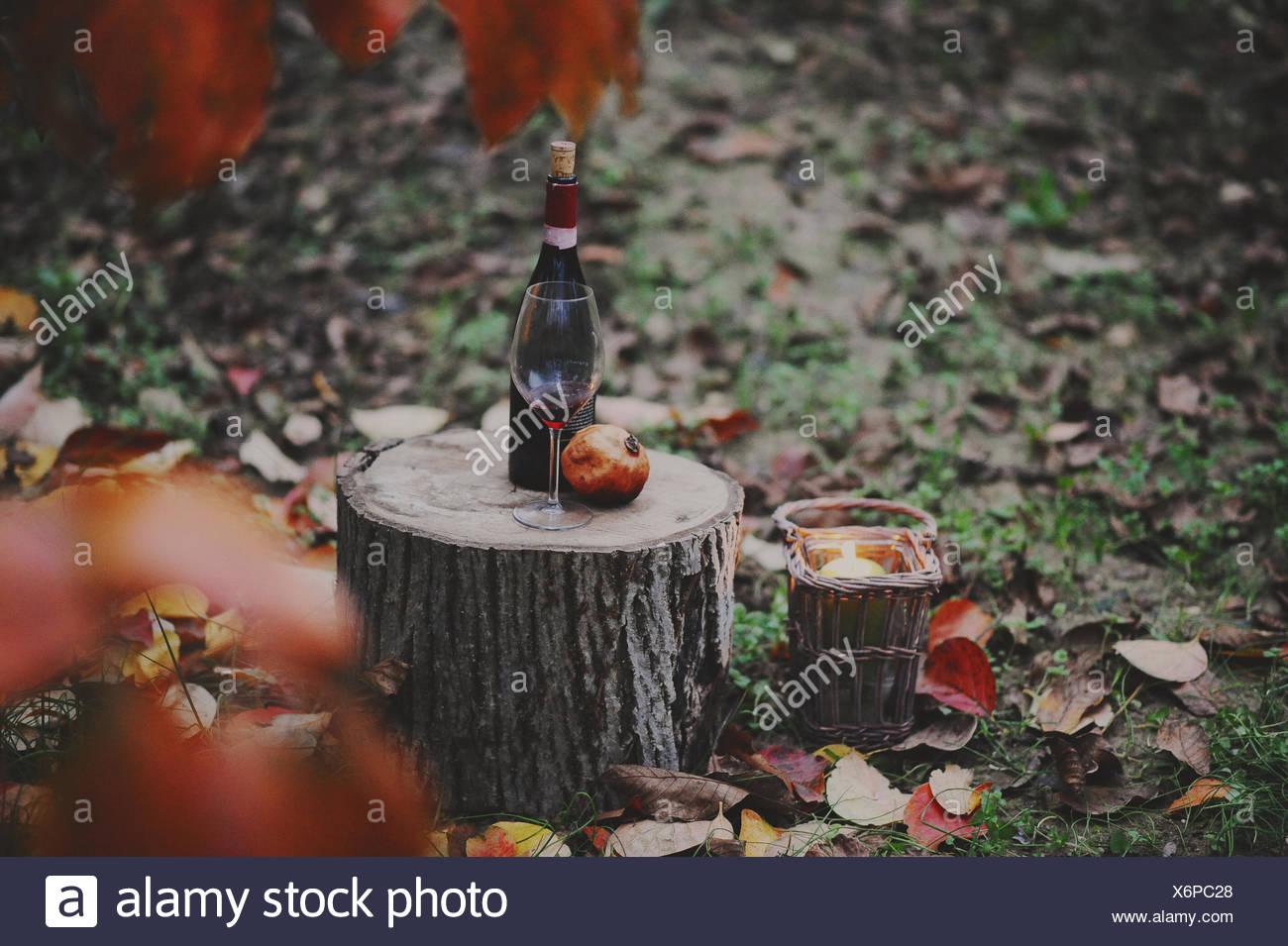 Italia, Piedmont, Tortona, Still life with bottle of red wine, Glass and pomegranate in autumn scene - Stock Image