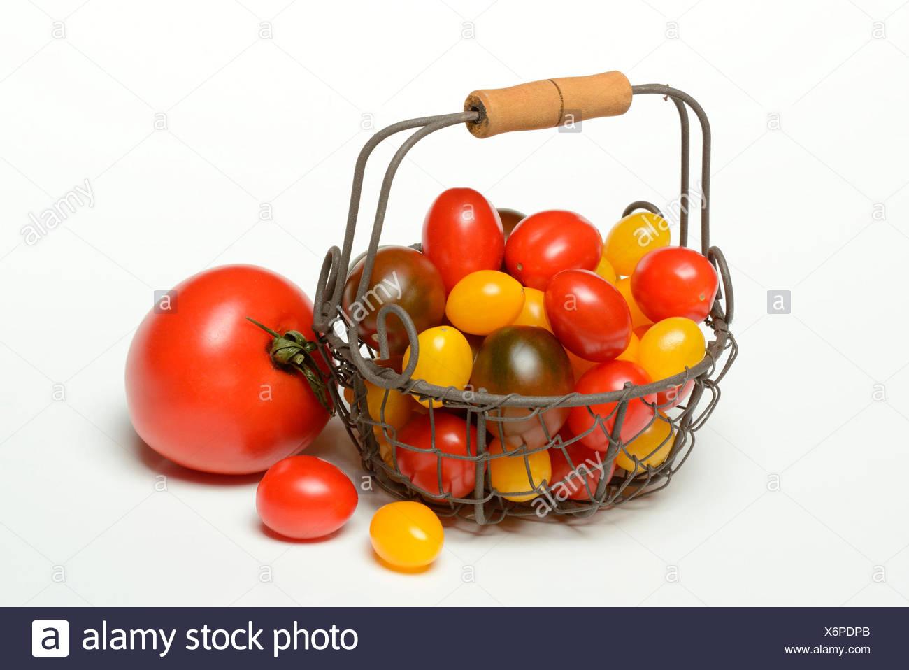 Cherry tomatoes / (Solanum lycopersicum) - Stock Image