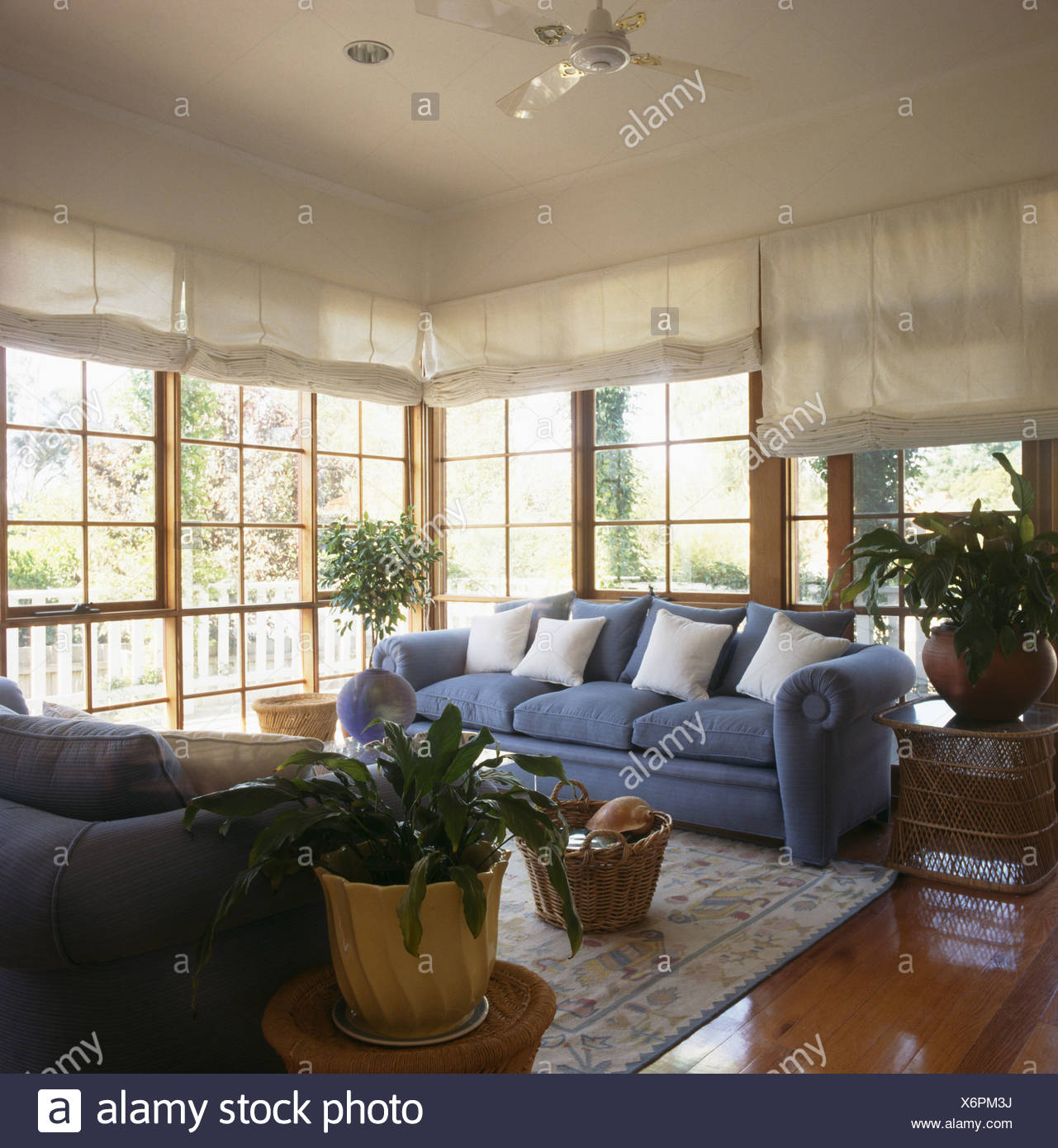 Strange White Cushions On Blue Sofa In Front Of French Windows With Uwap Interior Chair Design Uwaporg