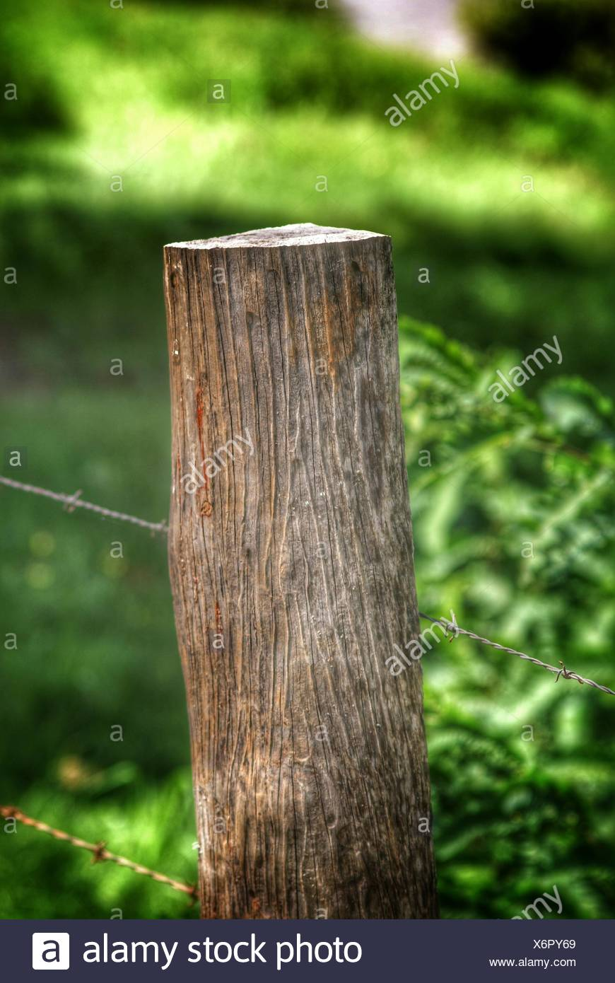 Close-Up Of Barbed Wire Fence On Wooden Post - Stock Image