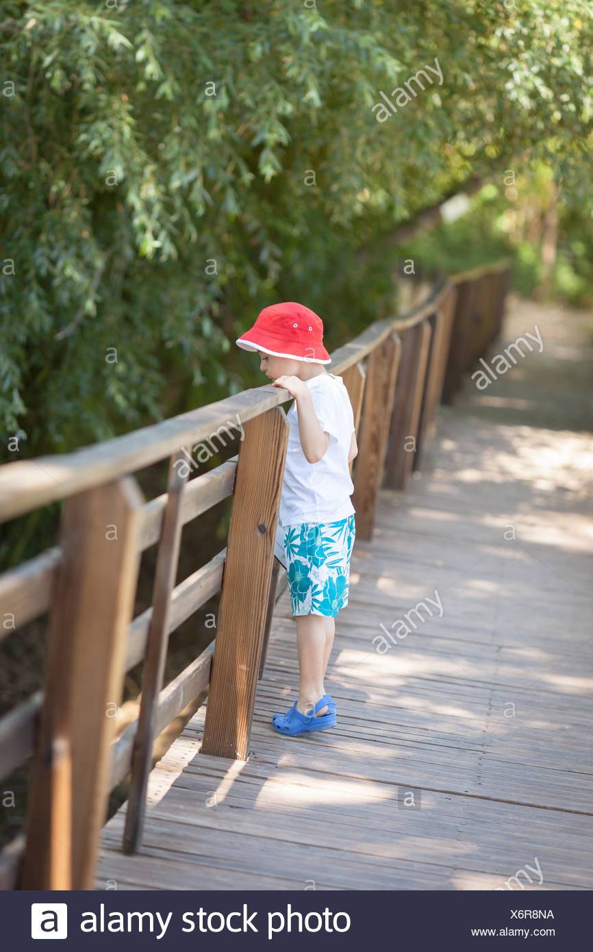 Full Length Of Boy Looking At Trees From Railing In Forest - Stock Image