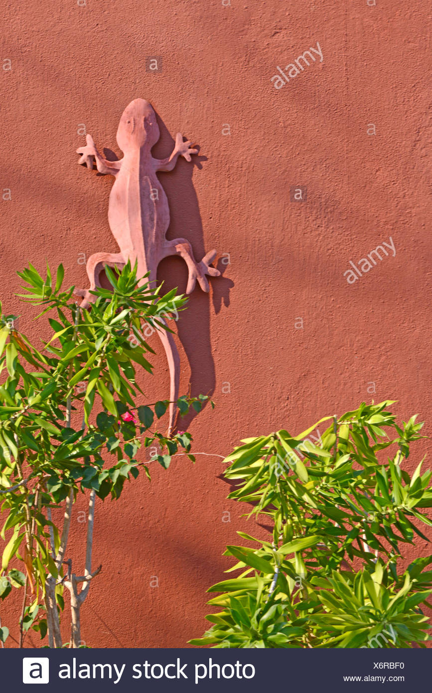 stone gecko on an house wall, Madagascar, Ankify - Stock Image