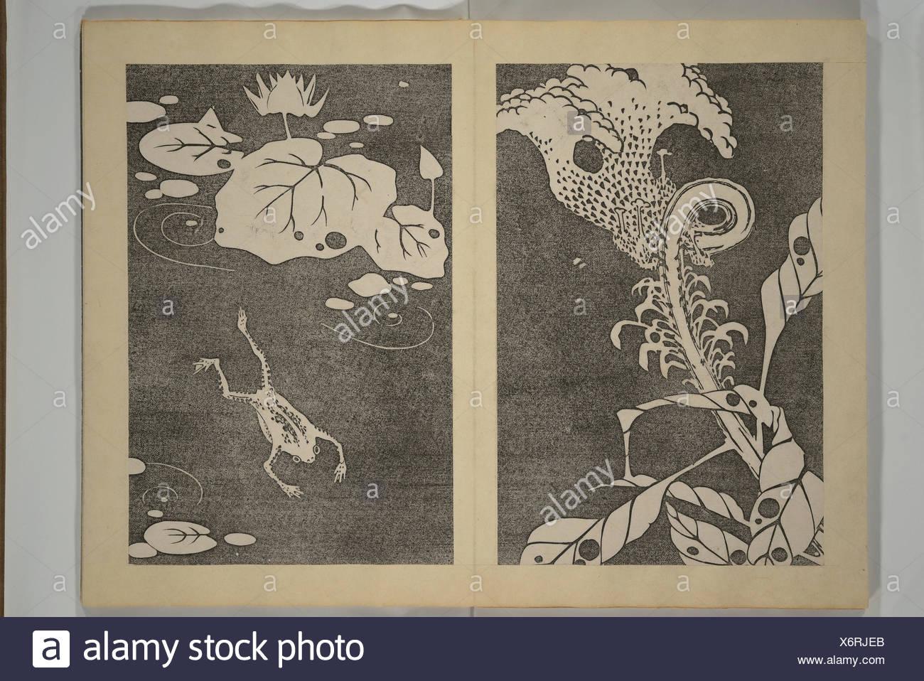Jakuchu Picture Album (Jakuchu gajo). Artist: Ito Jakuchu (Japanese, 1716-1800);  Period: Meiji period (1868-1912); Date: ca. 1900; Culture: Japan;