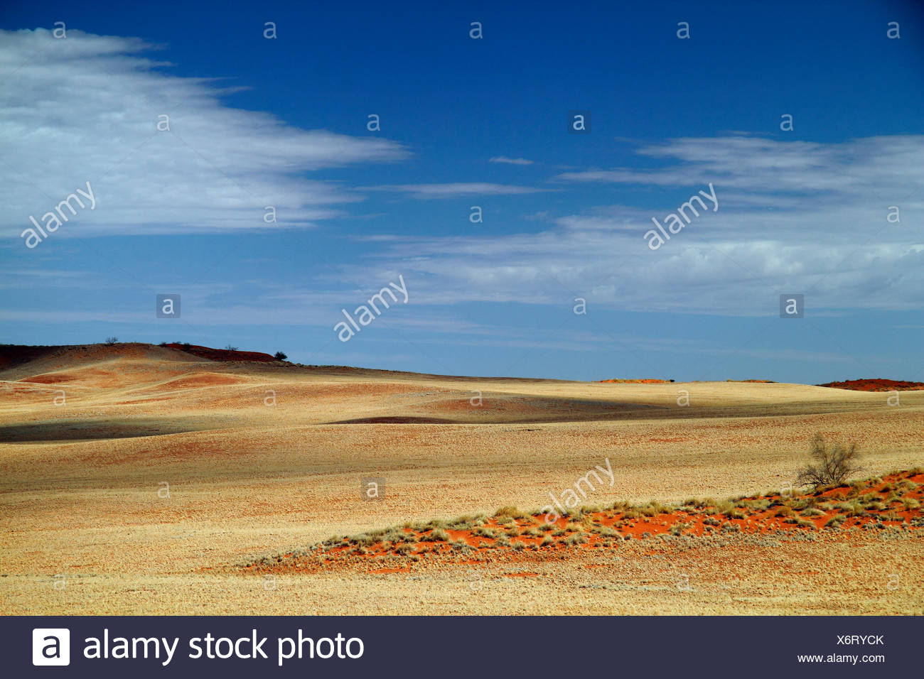 desert landscape with clouded sky, Namibia, Namib Naukluft National Park - Stock Image