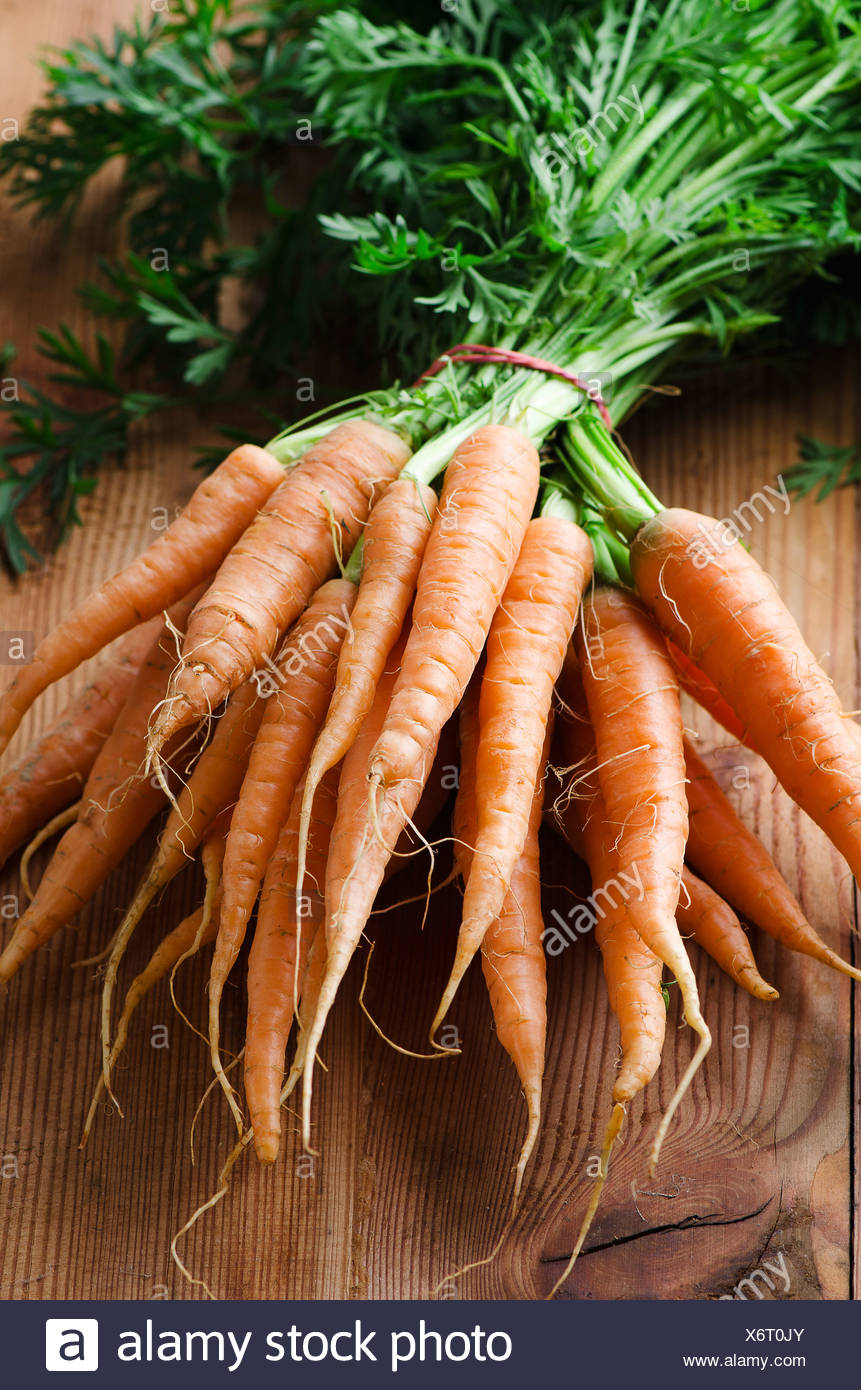 Bunch of fresh carrots with green stalks - Stock Image
