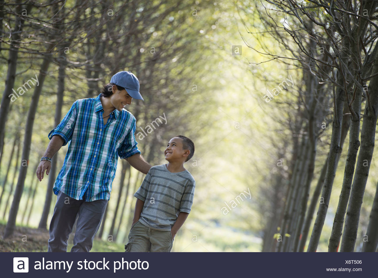 A man and a young boy walking down an avenue of trees. Stock Photo