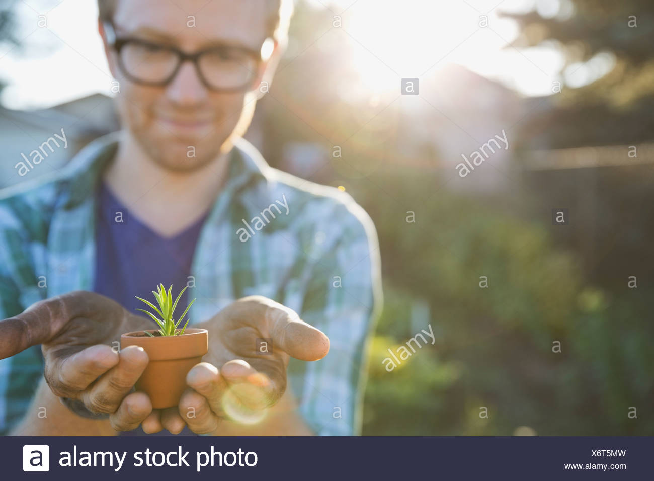 Man holding tiny potted plant in community garden - Stock Image