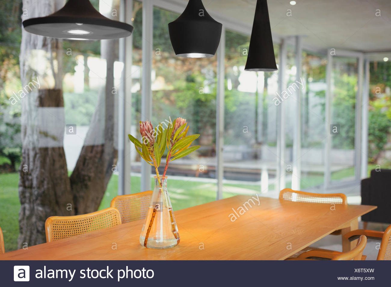 Modern Black Pendant Lights Hanging Over Bouquet On Dining Room Table Stock Photo Alamy