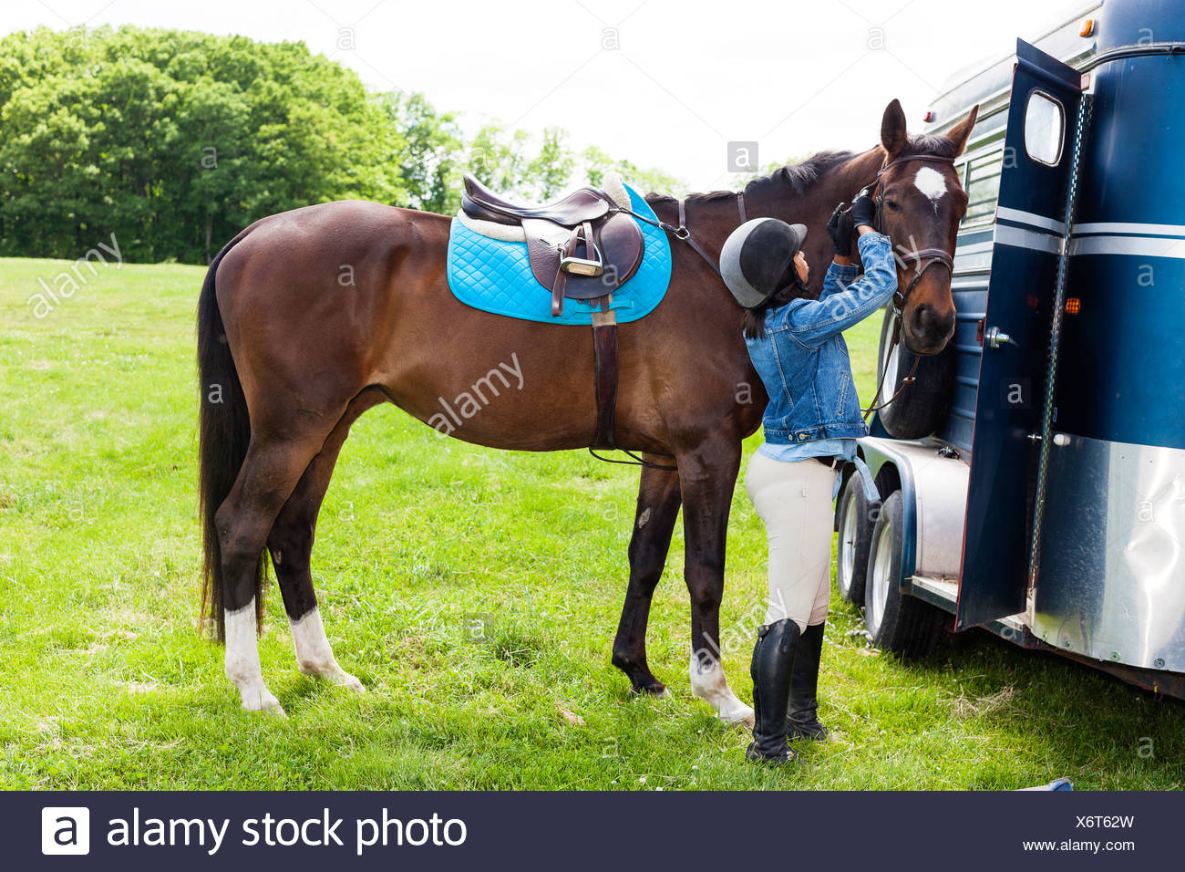 Horse rider putting on horse's bridle - Stock Image