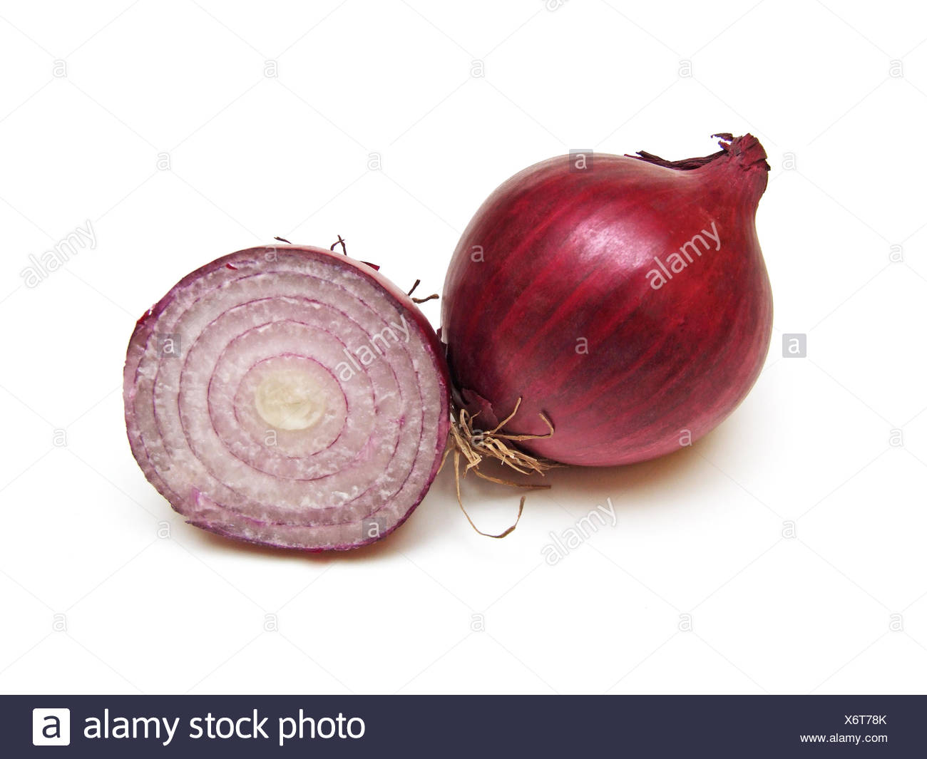 purple onion (Allium cepa) - Stock Image