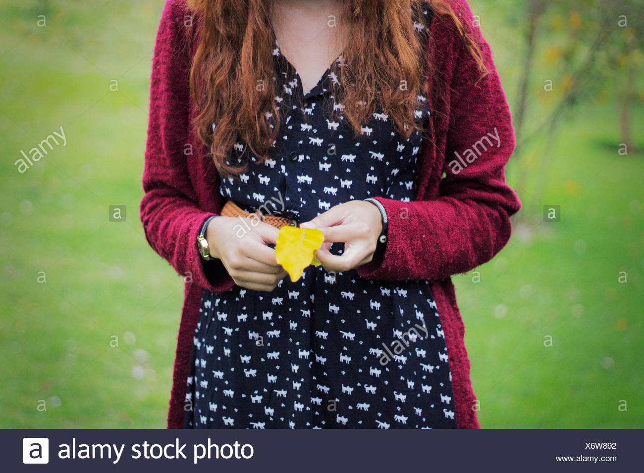 Midsection Of Woman Holding Autumn Leaf On Grassy Field - Stock Image