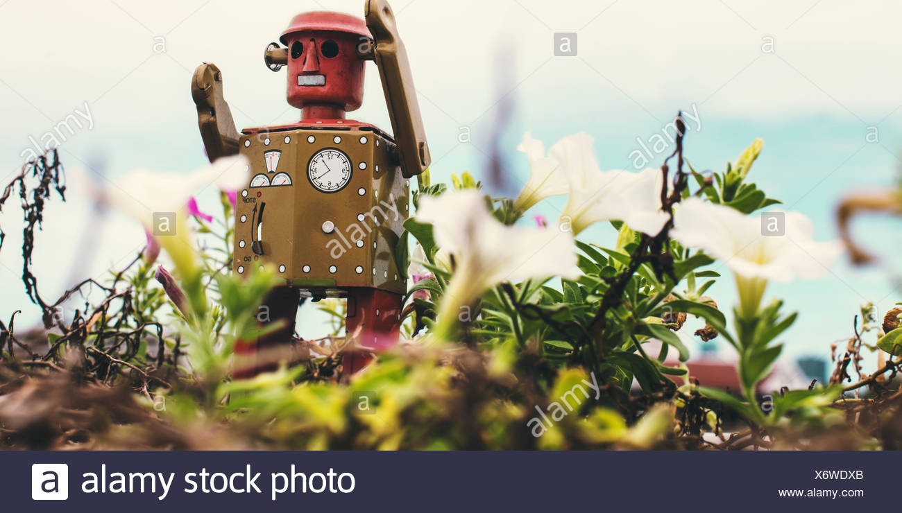 Robot Toy Imagination Retro Styled Environment Plant Nature Concept - Stock Image