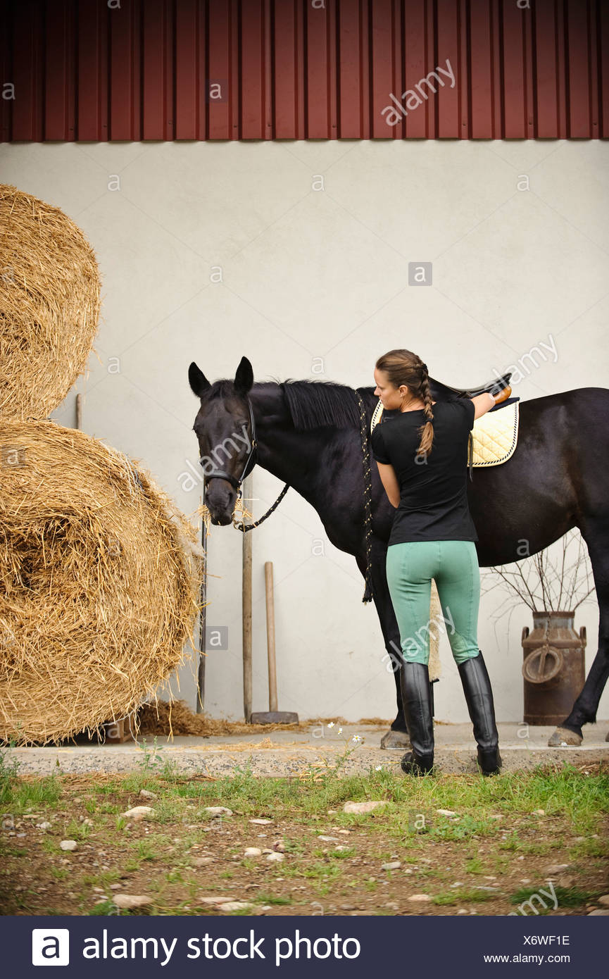Woman saddle horse - Stock Image