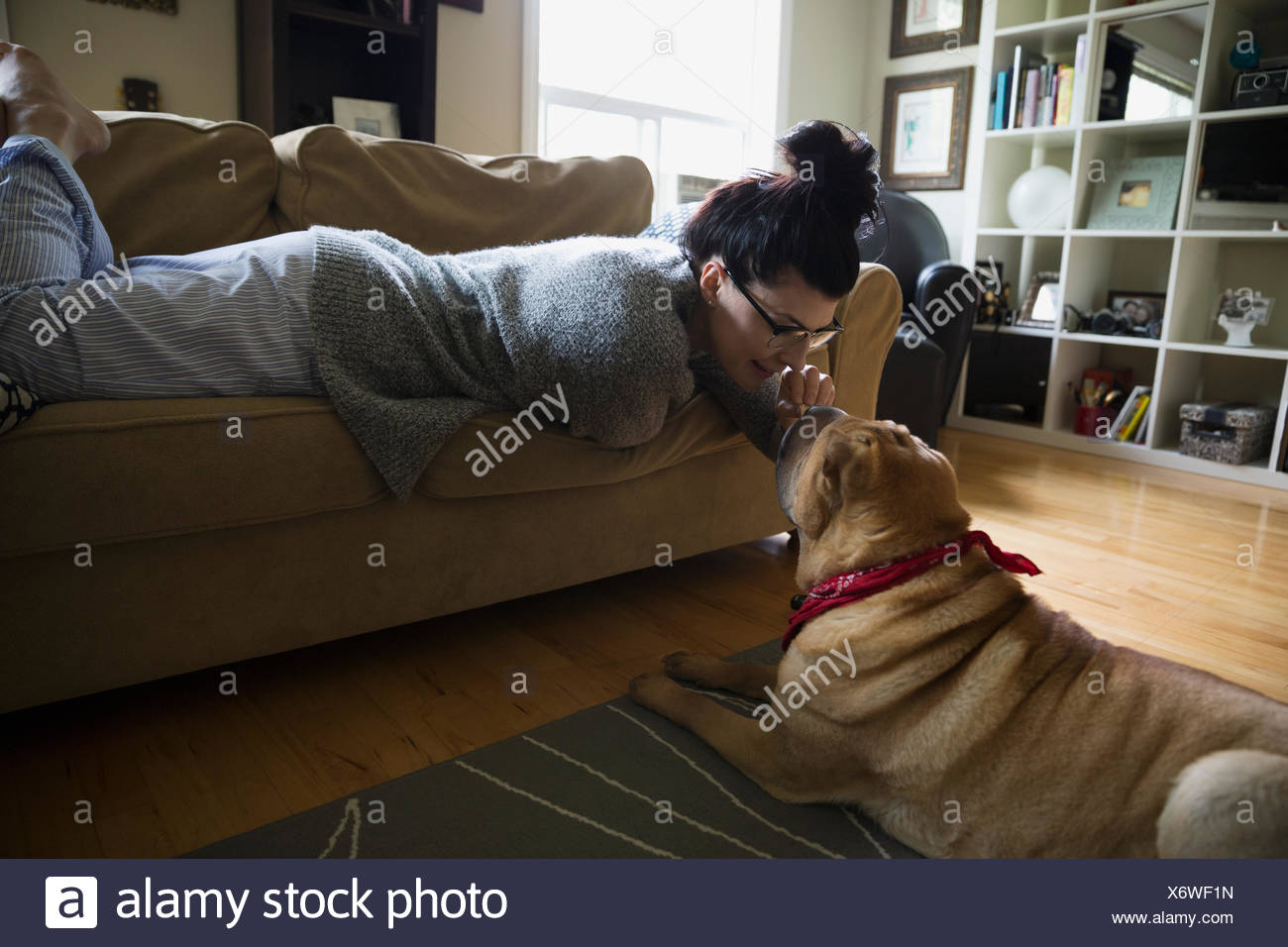 Woman on sofa petting dog's nose in living room - Stock Image
