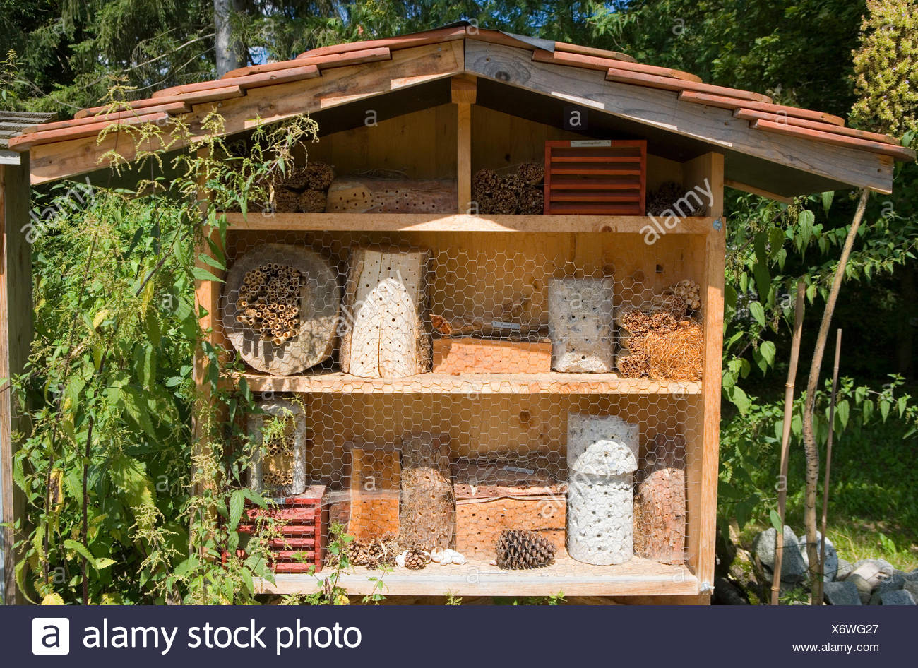 Botanischer Garten München-Nymphenburg (botanical garden), 16, 000 plants are cultivated, insect hotel for beneficial organism like wild bees, ladybirds, butterflies - Stock Image