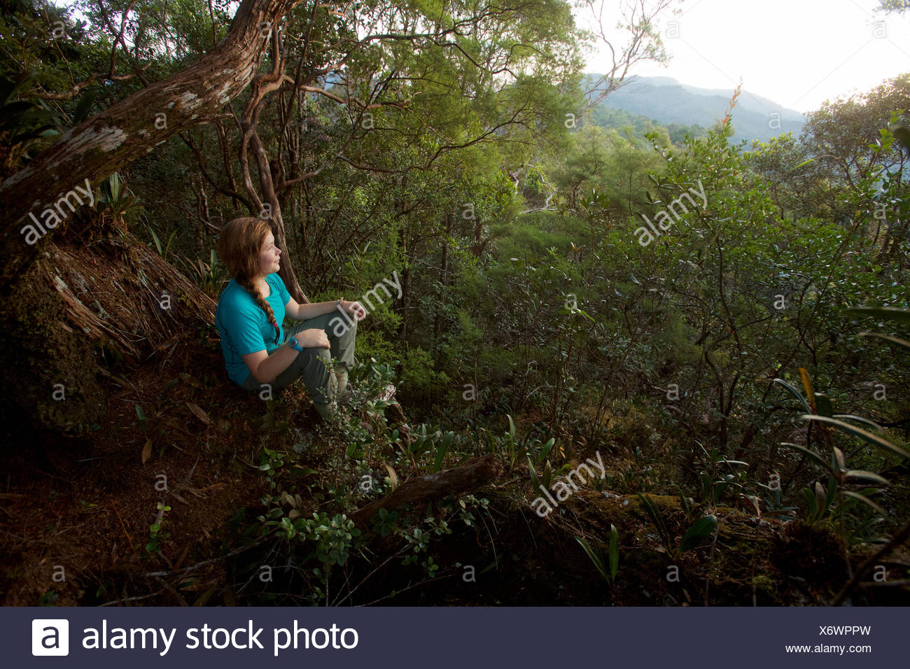 A girl watches the sunrise from Mossy Rock, a high point on the ridge in Gunung Palung National Park. - Stock Image