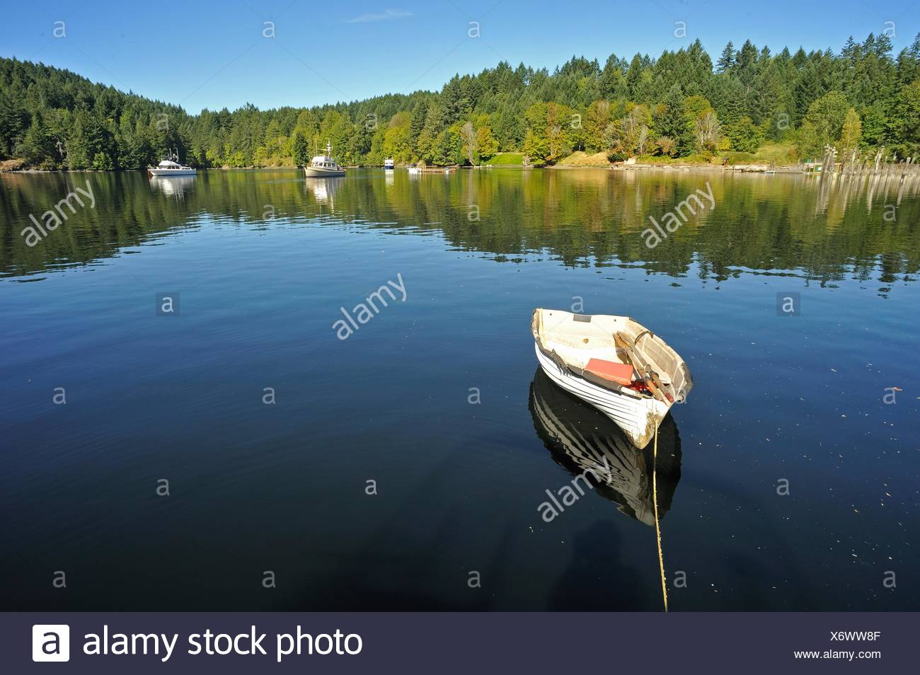 dinghy in Tod Inlet, Vancouver Island, British Columbia, Canada - Stock Image