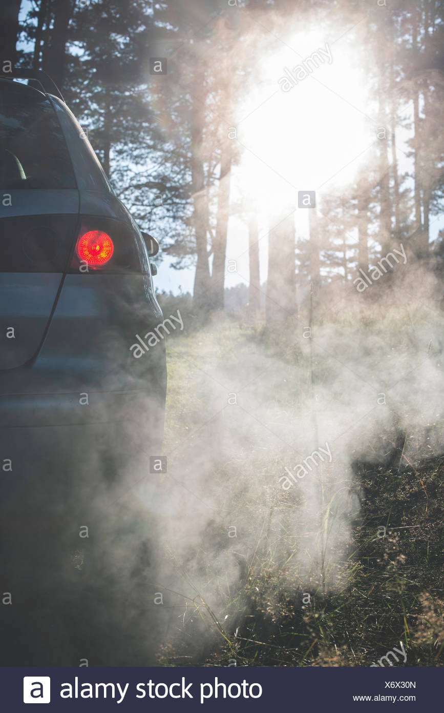 Car in the woods with smoke from exhaust - Stock Image & Car Exhaust Pipe Smoke Stock Photos u0026 Car Exhaust Pipe Smoke Stock ...
