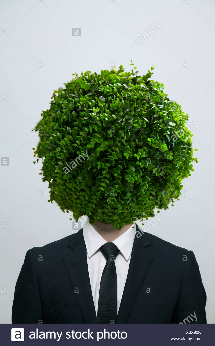 Businessman with a circular bush obscuring his face, studio shot - Stock Image