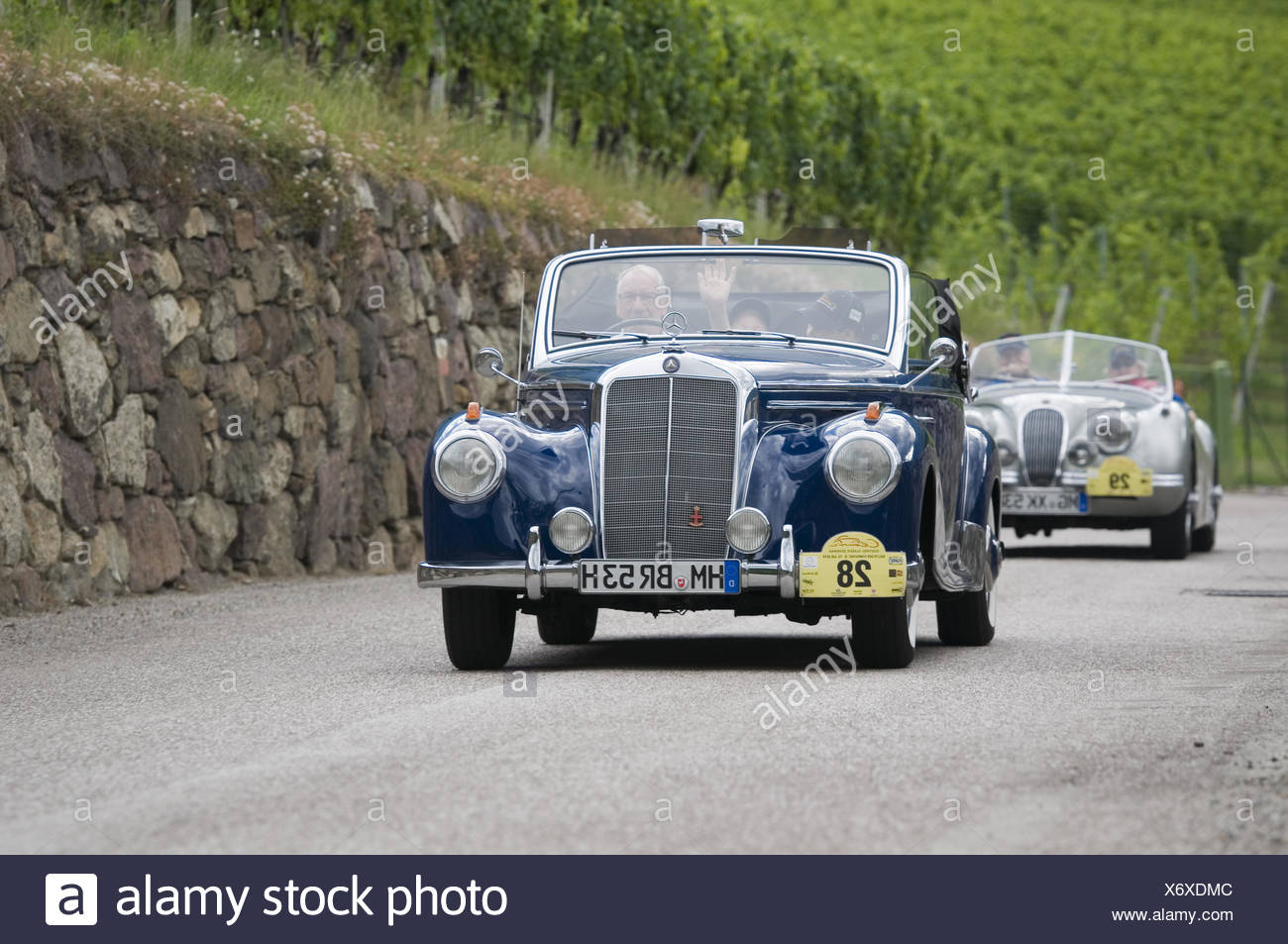 south tyrol classic cars 2014 Mercedes 220 CA Cabr Stock Photo ...
