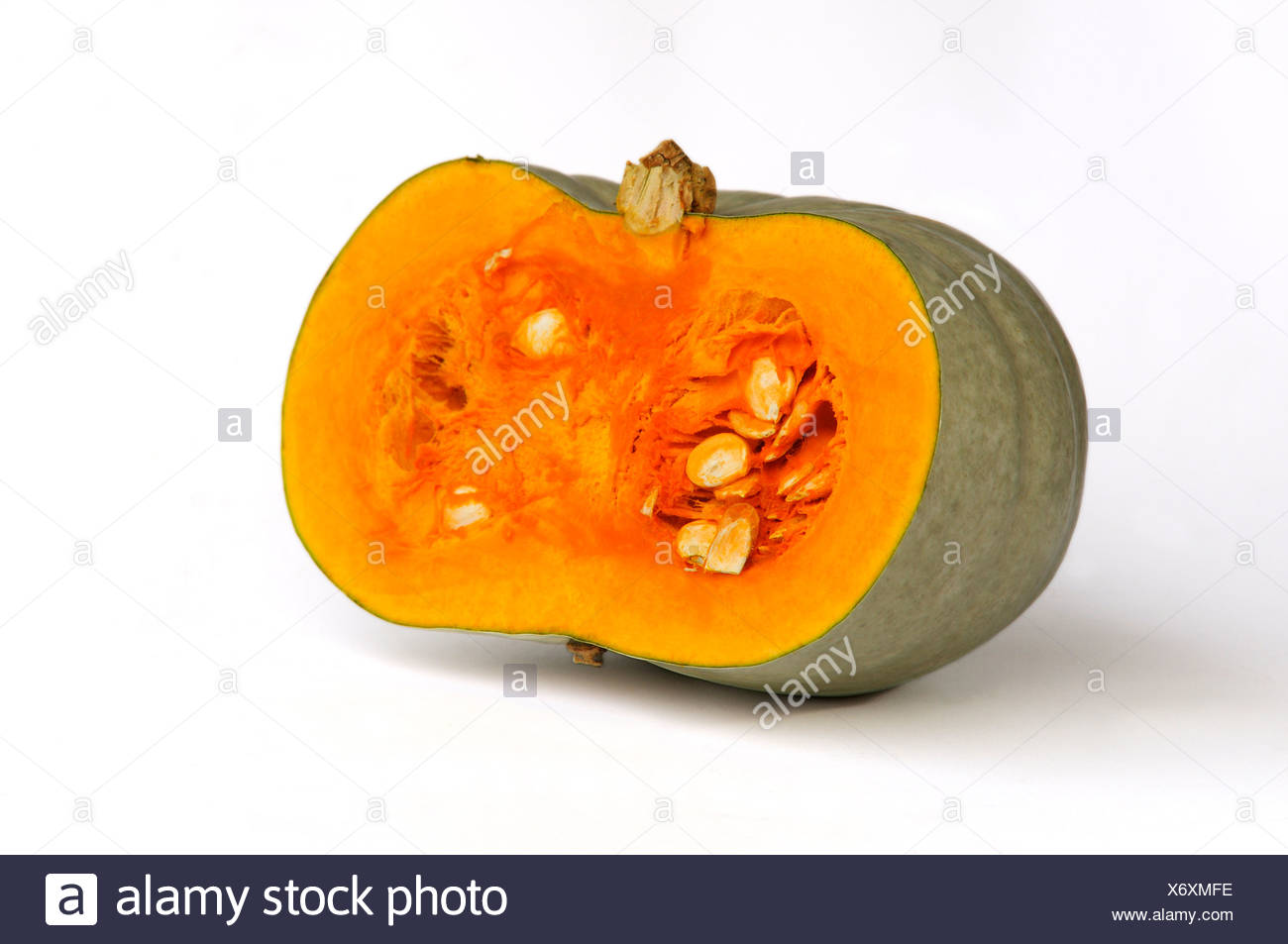 Pumpkin, squash, cut open, variety Bleu d'Hongrie - Stock Image