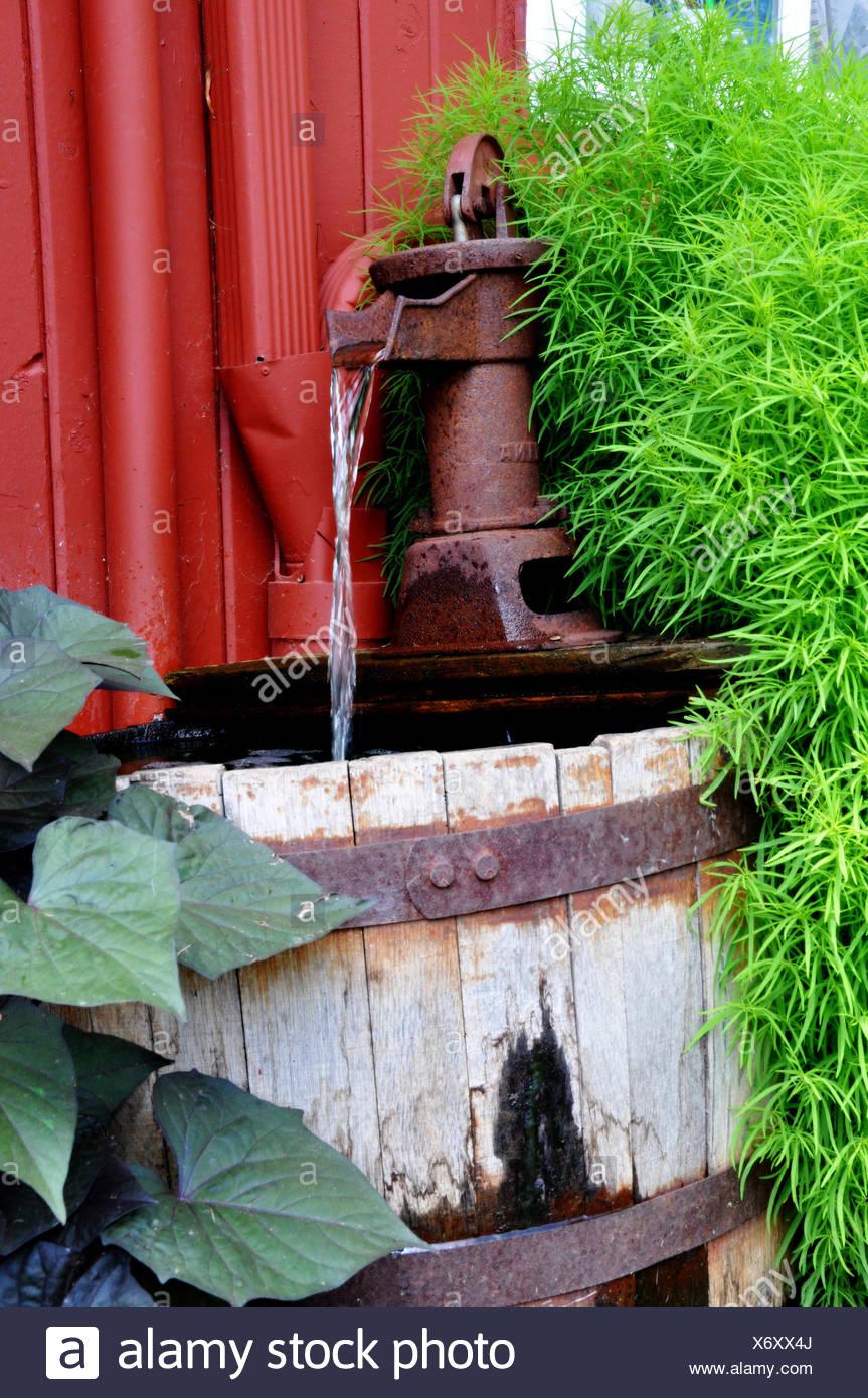 Antique Wet Plants Old Water Pump Wood Antique Vintage Bucket Wet