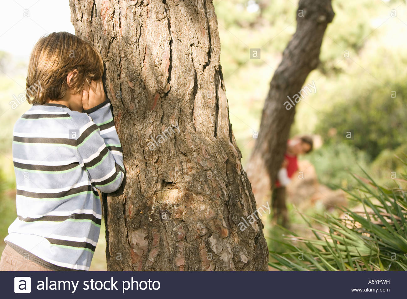 Children playing hide and seek in forest - Stock Image
