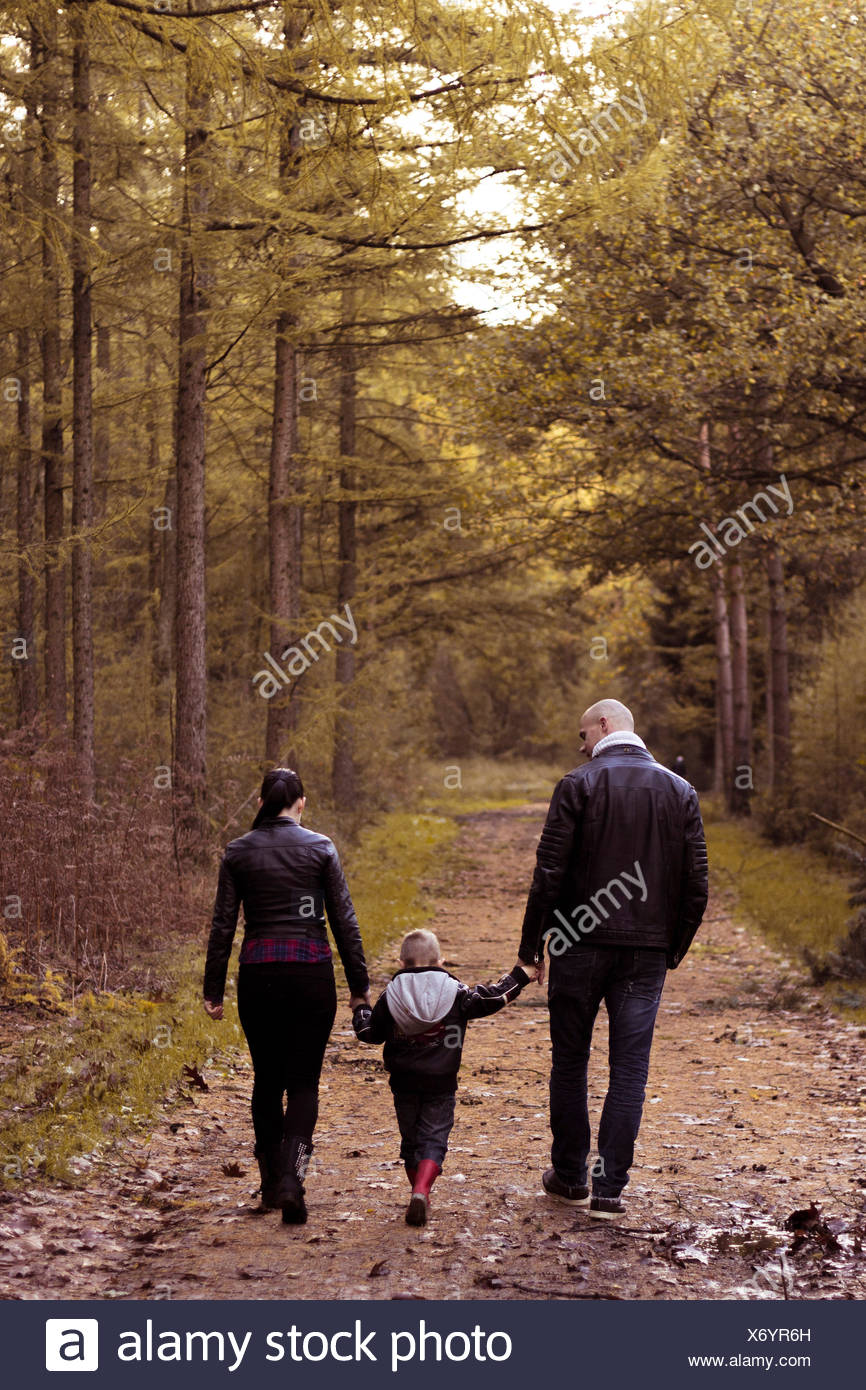 Rear view of family with one child holding hands and walking in the forest - Stock Image