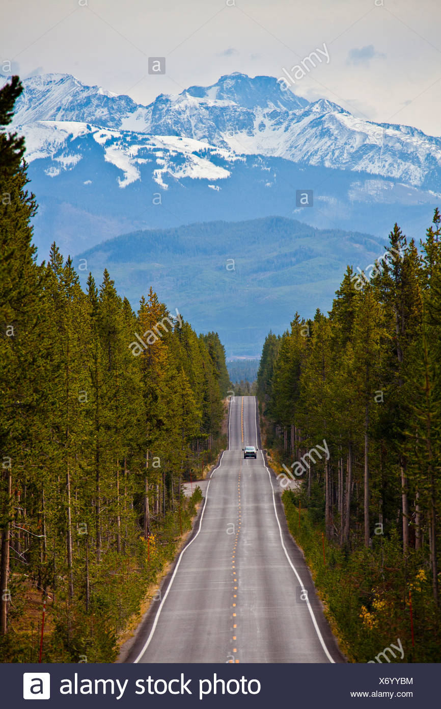 USA, United States, America, Wyoming, Yellowstone, National Park, Yellowstone drive, mountains, park, road, snow, straight, wood - Stock Image