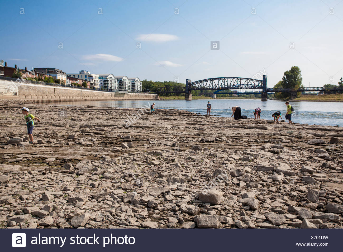 People on the Domfelsen in Magdeburg, low tide (55 cm), - Stock Image