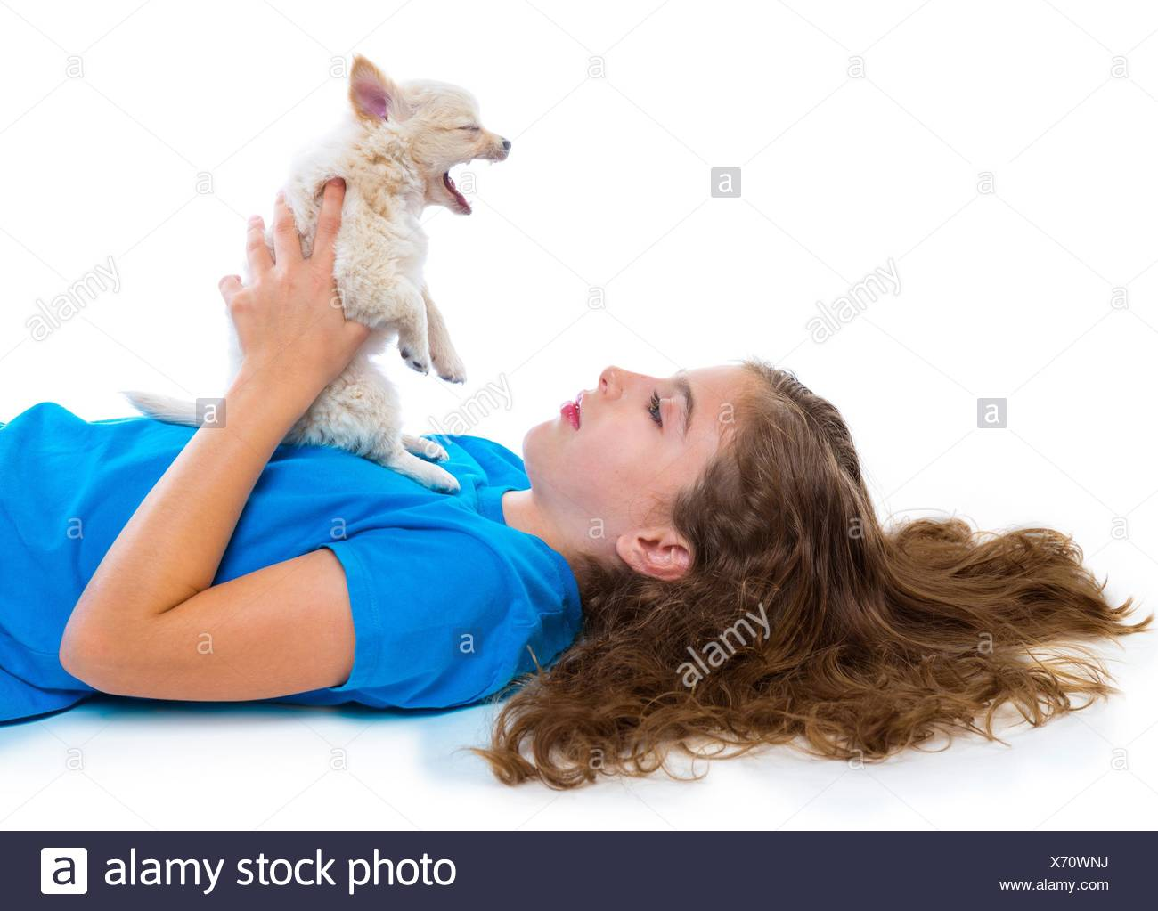 relaxed kid girl and puppy yawning chihuahua dog lying happy on white background. - Stock Image