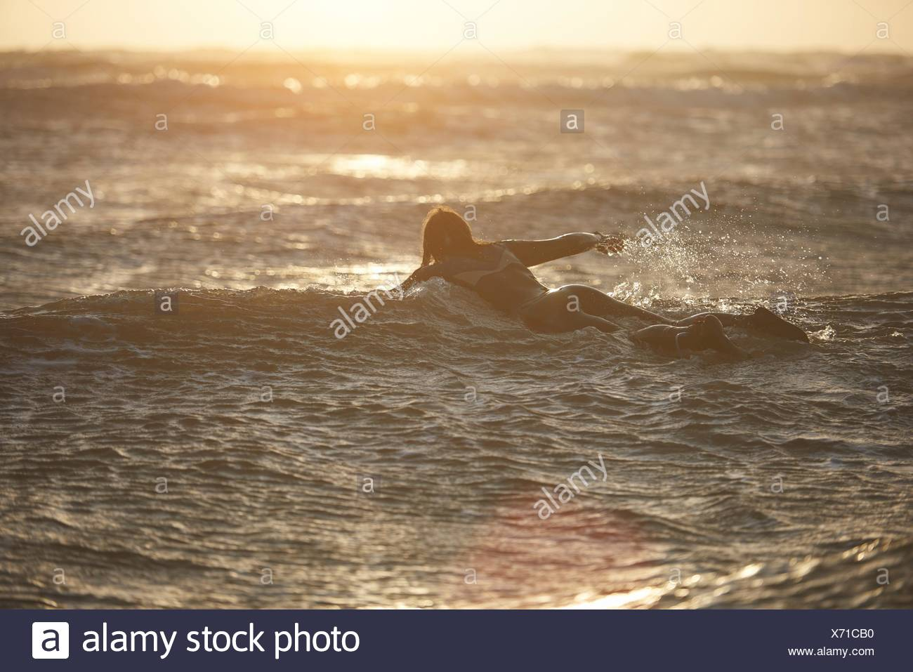 Young male surfer paddling out to sea on surfboard, Devon, England, UK - Stock Image