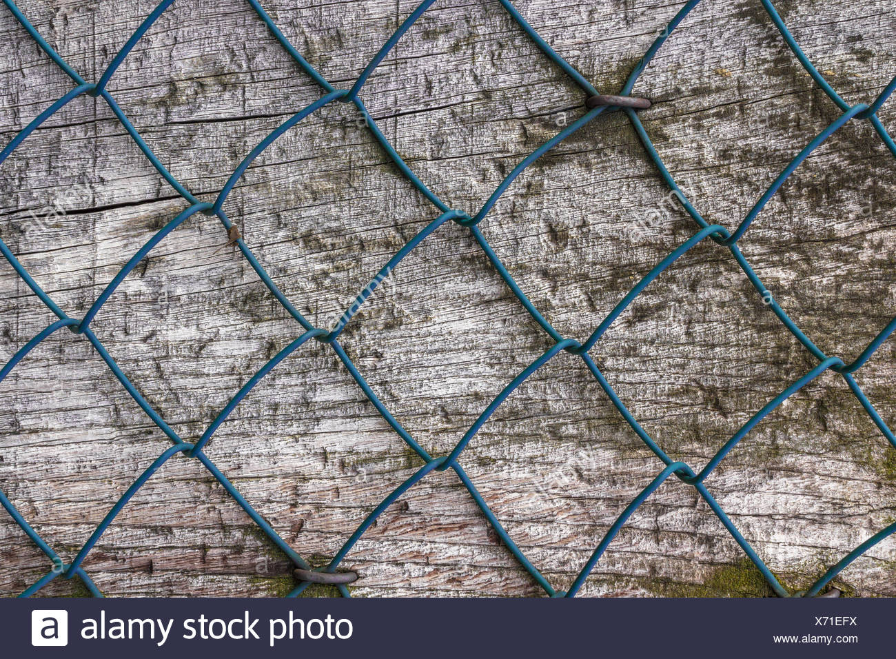 Diamond fence Stock Photo: 279701854 - Alamy