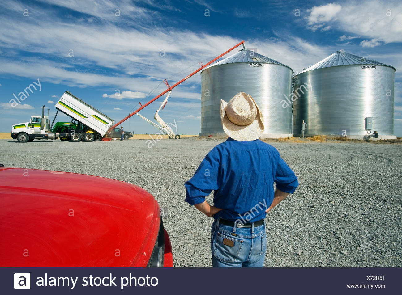 A farmer watches as his newly constructed grain bins are filled with newly harvested winter wheat / near Kane, Manitoba, Canada. - Stock Image