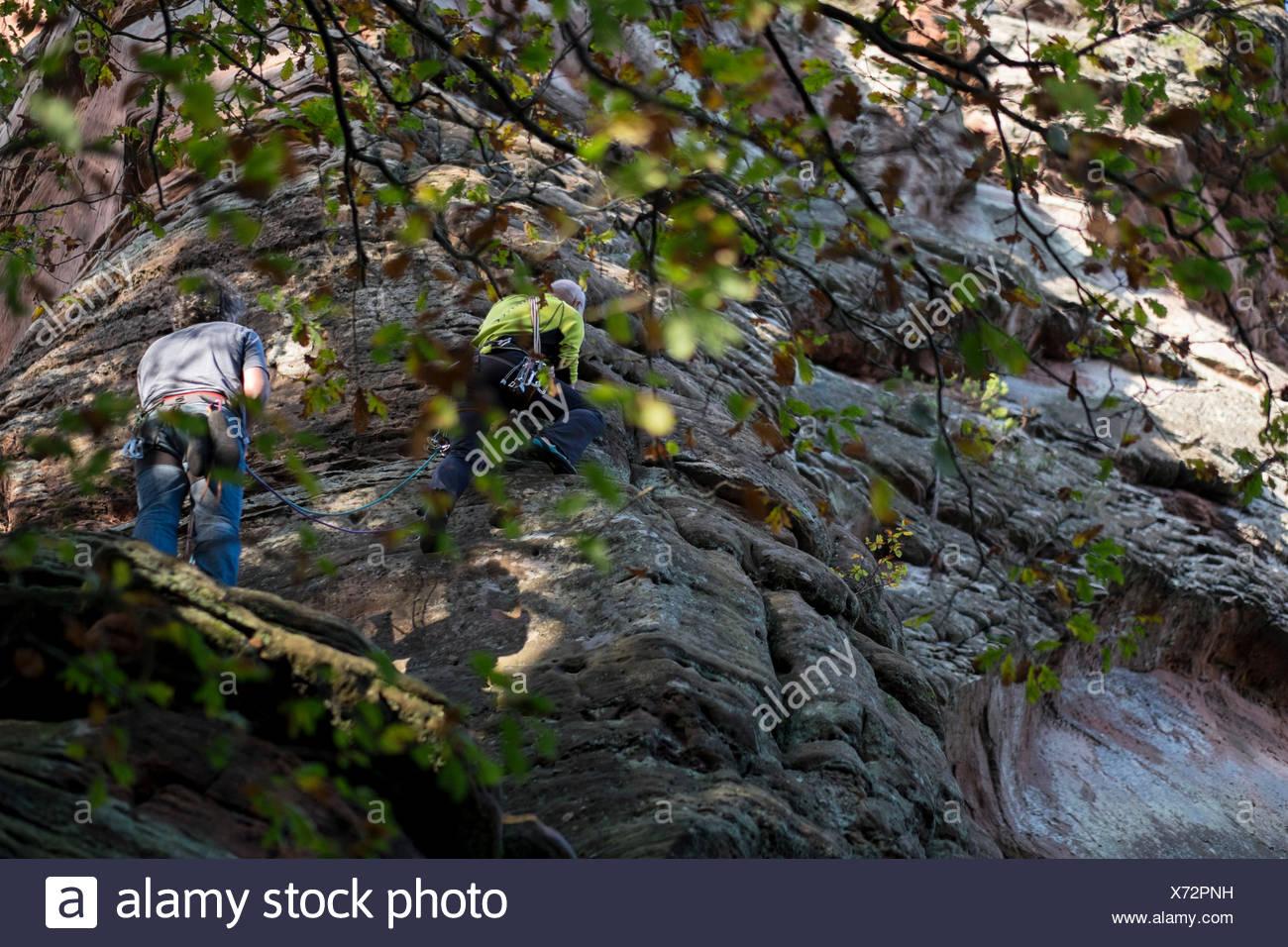Climber at the PK edge on the Hochsteinnadel, Dahner Felsenland, Palatine Forest, Rhineland-Palatinate, Germany, - Stock Image