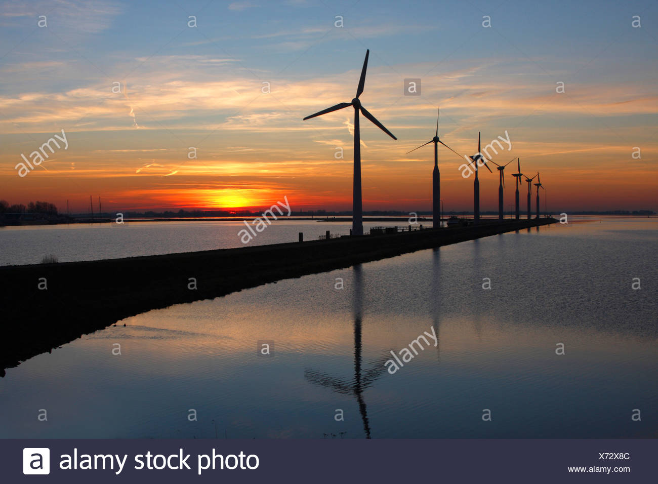 wind wheels at the Ijsselmeer in evening light, Netherlands, Enkhuizen - Stock Image