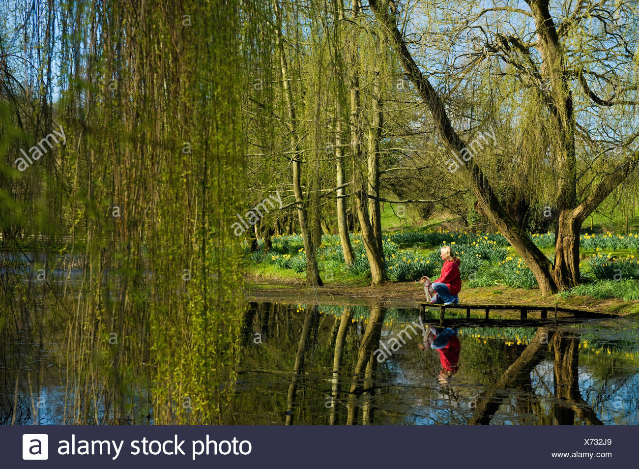A woman and a small dog standing on a jetty by a lake. - Stock Image