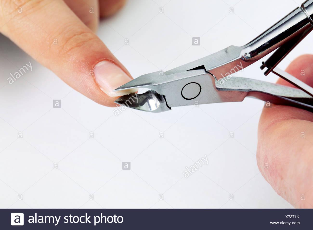 Manicure - Stock Image