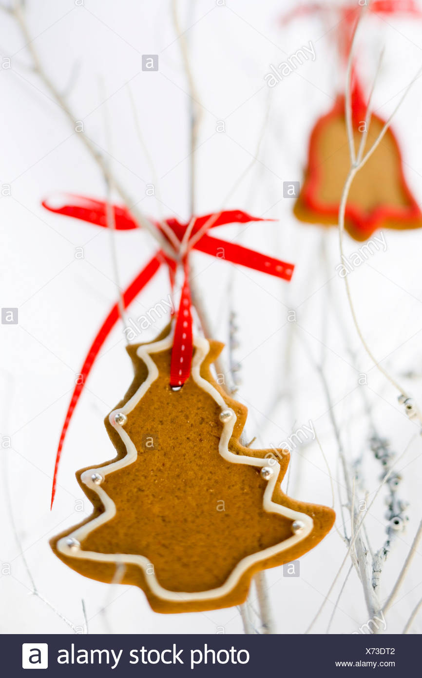 ginger biscuits used as christmas decorations stock image