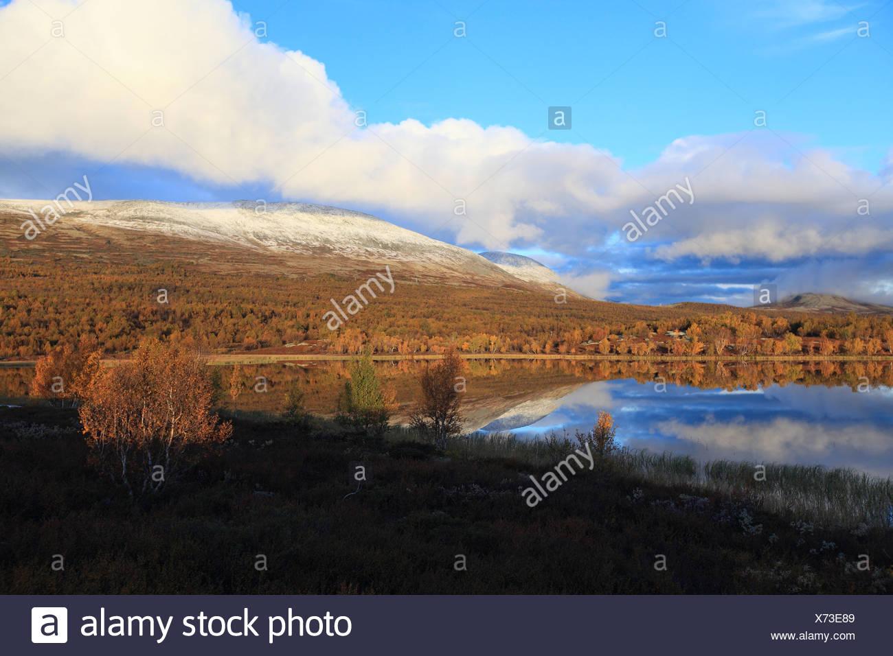Dovre Nationalpark Norway Stock Photo