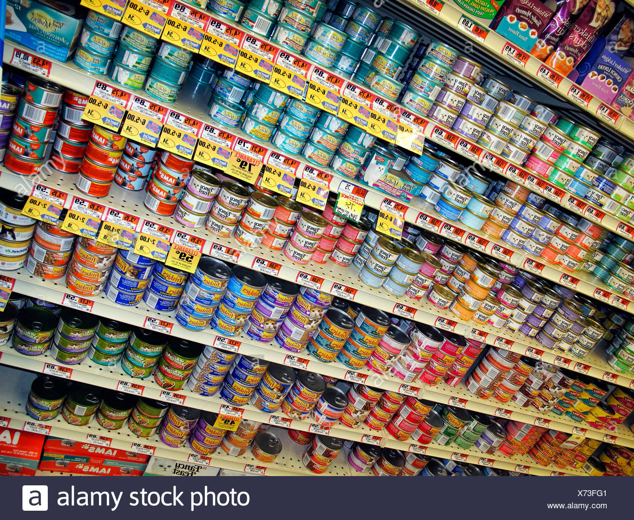 Tins of cat food in a grocery store. - Stock Image