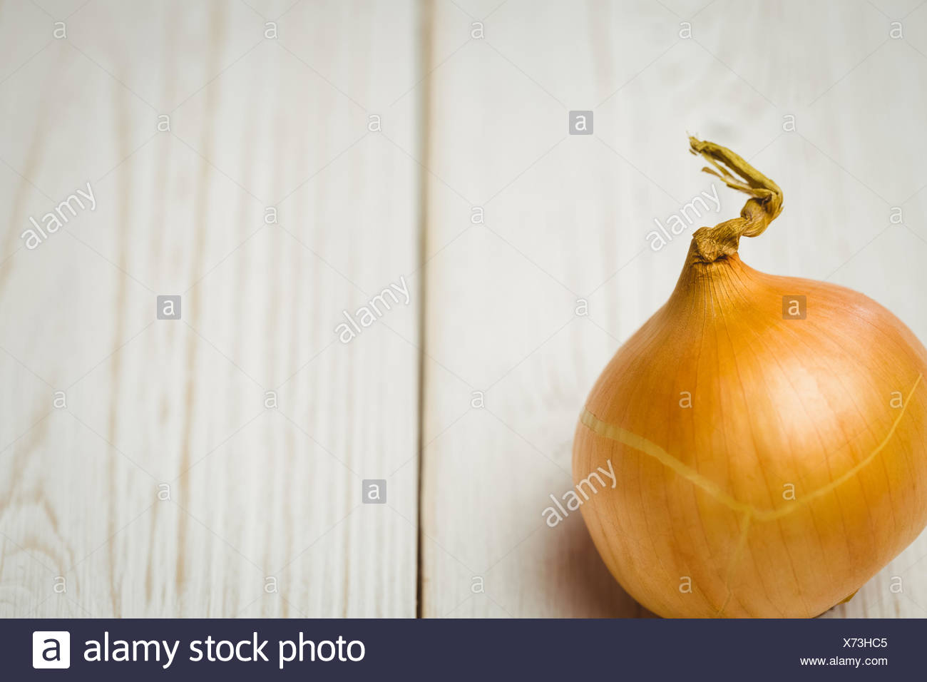 Fresh onion Stock Photo