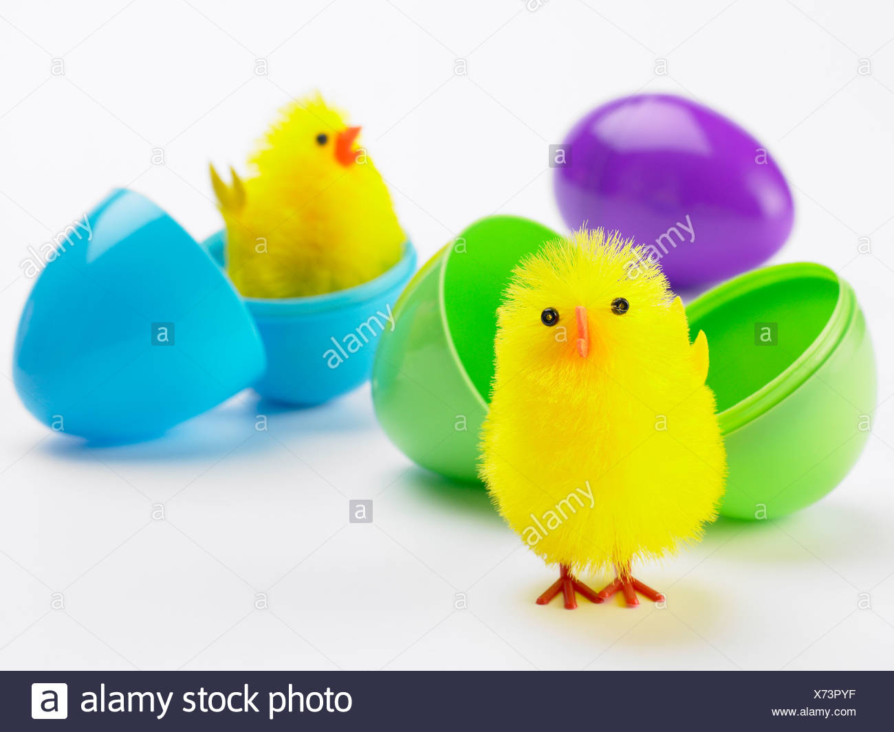 Easter Chicks Hatching Out Of Eggs - Stock Image