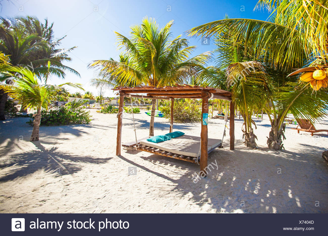 c2be6222f75e7 Beach beds and hammocks among palm trees at perfect tropical coast ...