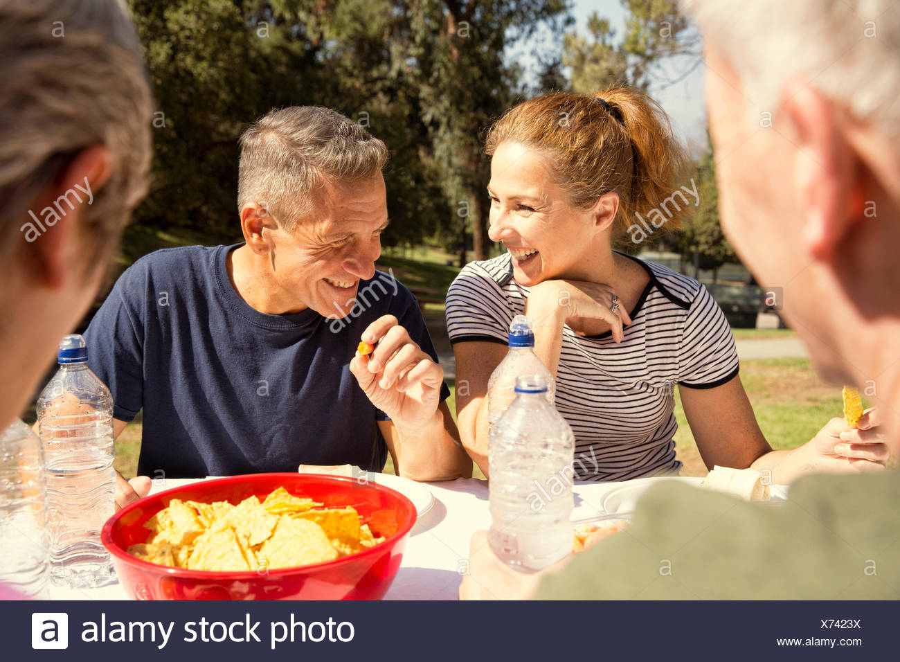 Four mature adult friends chatting over picnic lunch in park - Stock Image