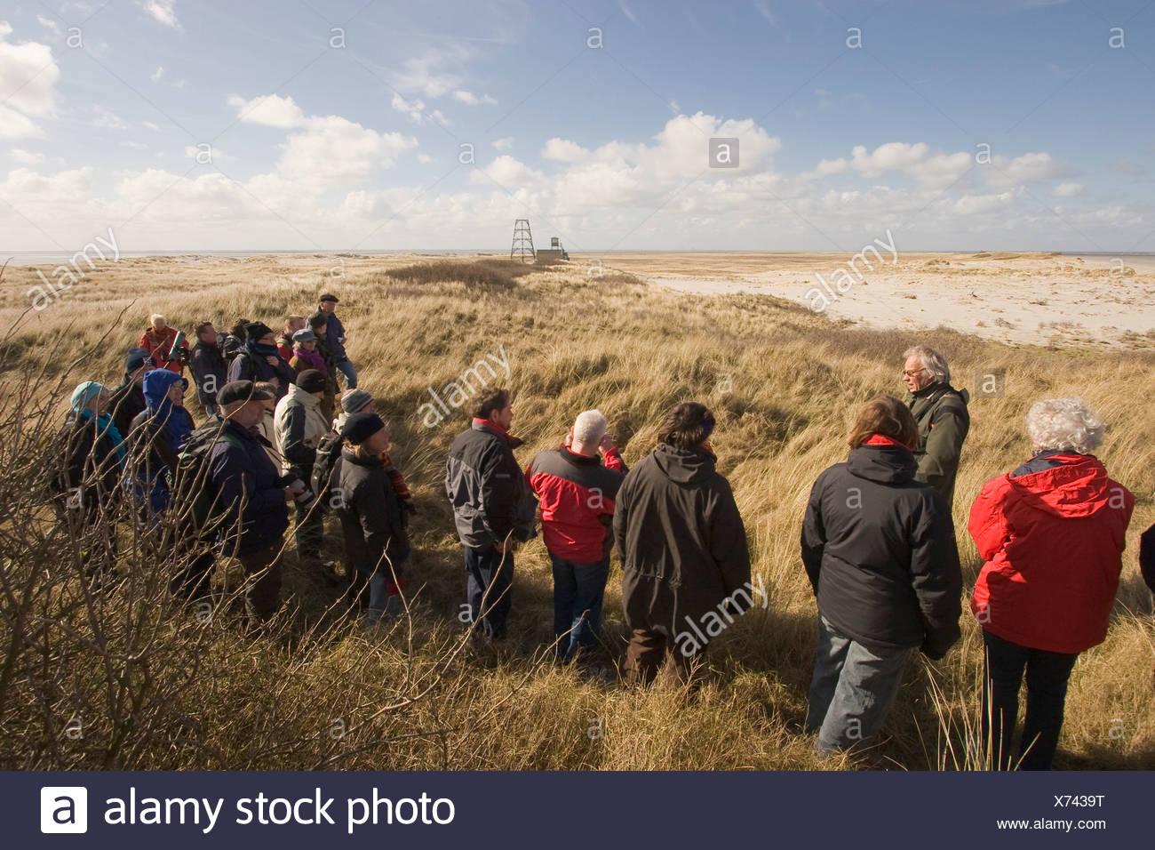 Boswachter Nico de Vries van Staatsbosbeheer geeft uitleg over Rottumeroog. Warden Nico de Vries (SBB) guiding a group on Rottumeroog. - Stock Image