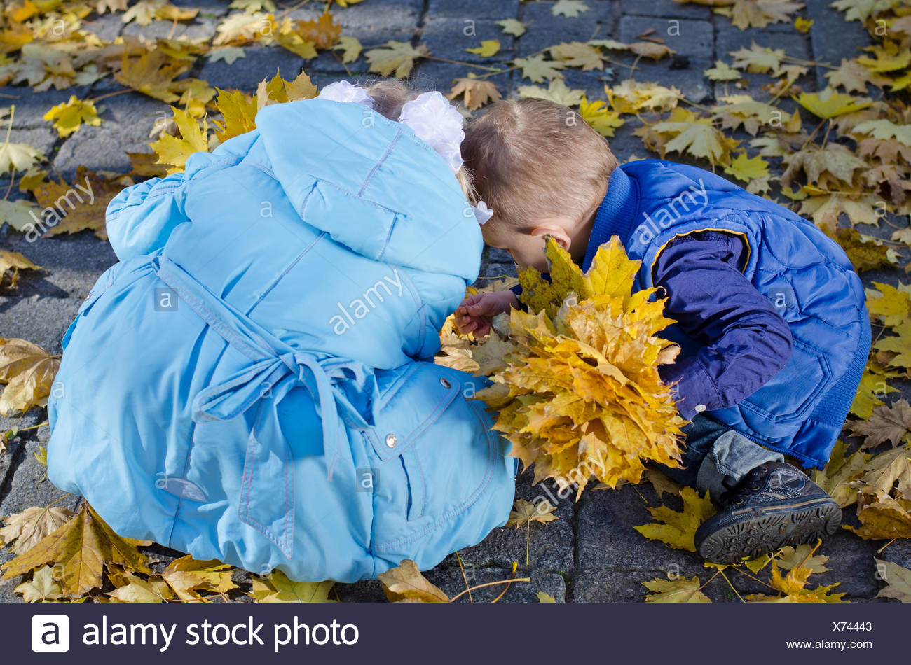Young Children Gathering Autumn Leaves - Stock Image