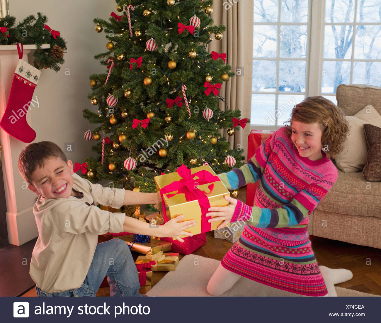 Boy and girl tugging at Christmas gift in living room - Stock Image