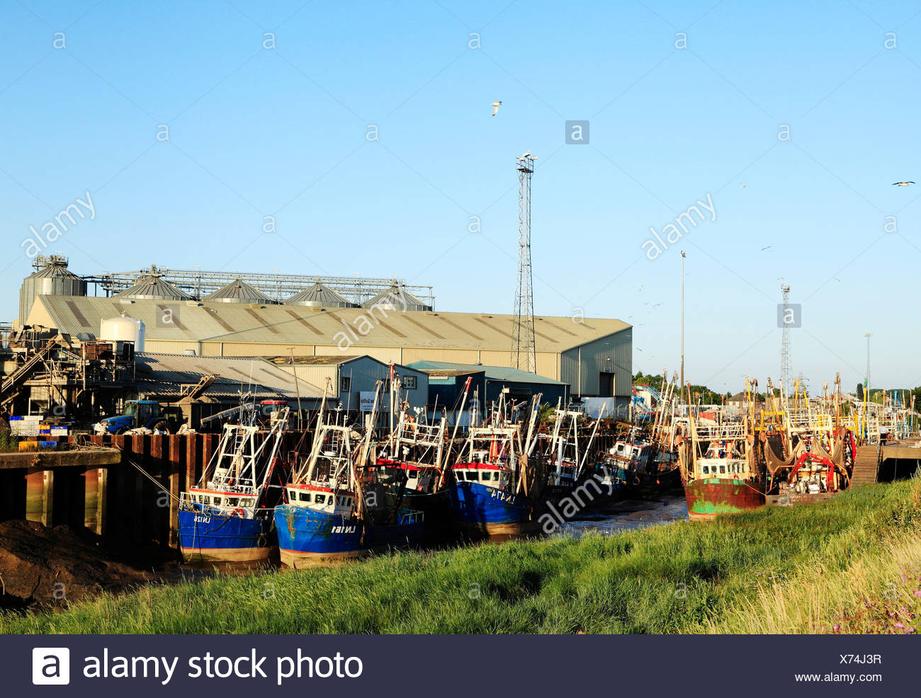 Kings Lynn, Port and Fishing Fleet,.Norfolk England UK, boats vessels quayside industrial harbour fishery harbor - Stock Image